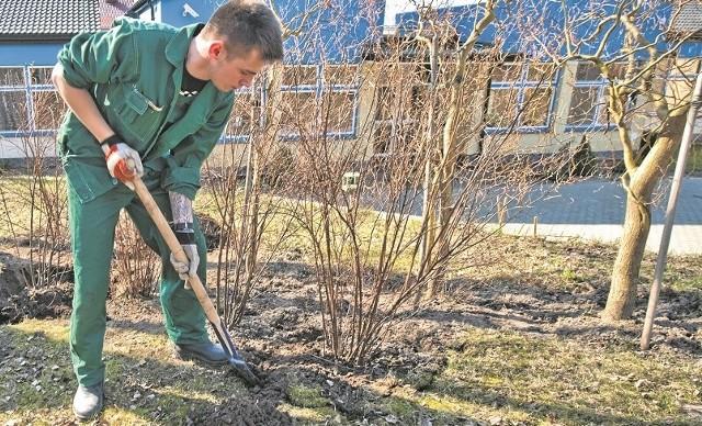 Uczniowie klas II architektury krajobrazu dbają o ogród przy Hospicjum im. św. Maksymiliana Kolbego w Koszalinie.