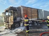 Pożar ciężarówki na trasie S8. Kabina kierowcy spłonęła doszczętnie. Cudem nikt nie ucierpiał [ZDJĘCIA]