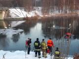 Akcja strażaków na Zalewie Koronowskim. Uwalniali łabędzie przymarznięte do tafli