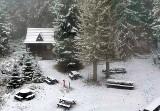 Pierwszy śnieg w Beskidach już spadł. Biało m.in. na Hali Lipowskiej i Markowych Szczawinach