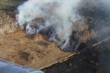 Płonie las w pobliżu nieczynnej elektrowni w Czarnobylu. Czy radioaktywny dym dotrze po Polski?
