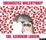 Walentynki 2021 MEMY. Śmieszne obrazki na Walentynki. Zobacz najlepsze!