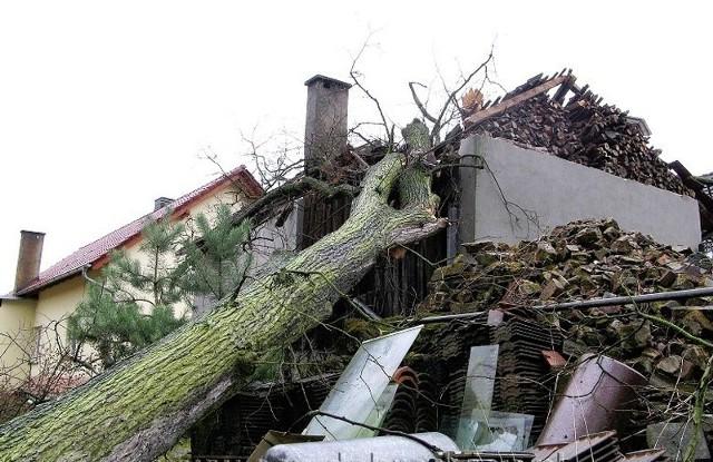 Drzewo runęło na budynek w Myślinie.