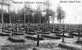 Wojenne nekropolie sprzed stu lat opisane. Po raz pierwszy