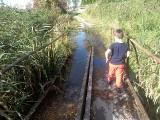 Mieszkańcy Woli Dalszej w gminie Białobrzegi proszą o remont kładki, ale władze tylko rozkładają ręce