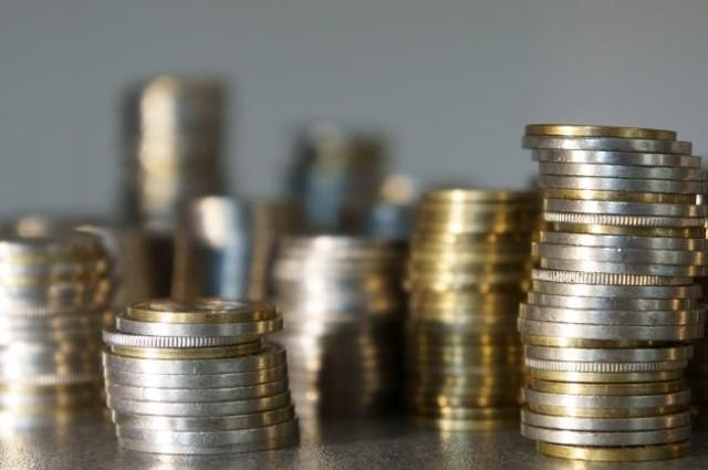 Ministerstwa Pracy i Polityki Społecznej dało 3 miliony złotych. Łapy pomogą trzystu bezrobotnym.