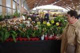 """Międzynarodowa Wystawa """"Świat Storczyków - The World of Orchids"""" w Sopocie. Wygraj wejściówkę na wystawę! [KONKURS]"""