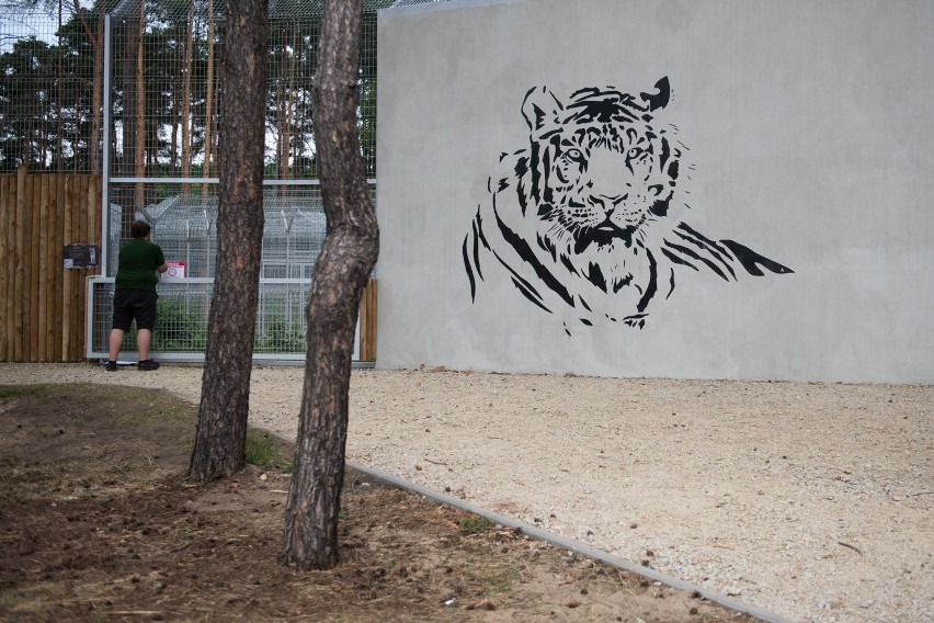 W Poznaniu każdy, kto postanowi wybrać się do Nowego Zoo,...