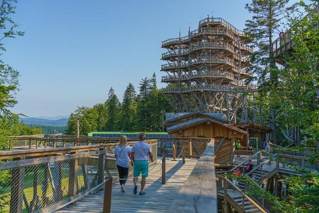 Wielu turystów będących w Krynicy-Zdrój wybiera wieżę widokową i ścieżkę w koronach drzew. Nadal obowiązują tam środki bezpieczeństwa związane z koronawirusem.