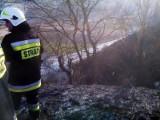 Jazowsko. Pożar traw, ogień zagroził gospodarstwu [ZDJĘCIA]