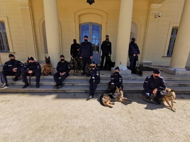 W szeregach podlaskiej policji służy 56 psów. Część z nich wzięła udział w sesji zdjęciowej ze swoimi przewodnikami w ogrodach Pałacu Branickich
