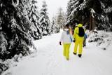 Te sporty zimowe można uprawiać w Trójmieście! Biegówki, sanki, łyżwy czy narty skiturowe?