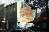 Tygrys na Jeżycach! Zobacz niesamowity mural, jaki pojawił się na kamienicy przy Kraszewskiego