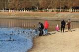 Tłumy na Rejowie w Skarżysku. Spacerowicze, biegacze, rowerzyści i morsy korzystają z pieknej pogody i uroków zalewu [ZDJĘCIA]