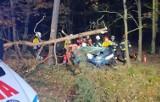 Wypadek w Mieczewie koło Kórnika. Samochód osobowy uderzył w drzewo. Nie żyje dwóch 18-latków, trzeci w szpitalu