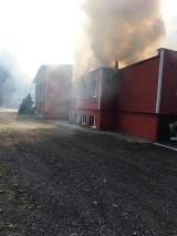 Chcą pomóc restauracji Beka w Pucku po pożarze. Trwają zbiórki pieniędzy. Pomagają też właściciele innych restauracji w mieście!