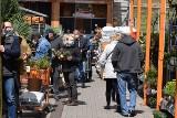 Najazd na markety budowlane w Kielcach. Pełne parkingi i duże zakupy. Zobacz zdjęcia