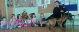 Strażnicy miejscy uczyli przedszkolaki obrony przed agresywnym psem (zdjęcia, wideo)