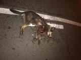 Zwyrodnialec przywiązał psa do samochodu i ciągnął przez miasto. Widziano go przy rondzie Lussy