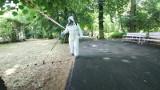 Poznań: Ognisko wścieklizny w rejonie parku Wilsona uznano za wygasłe