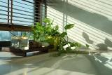 Tak możesz ochłodzić pokój bez klimatyzacji. Sprawdzone i skuteczne sposoby na upał w mieszkaniu [23.06.21]