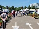 Giełda przy ul. Andersa w Białymstoku. Bogactwo warzyw i owoców w cenach niższych niż w marketach (ZDJĘCIA)