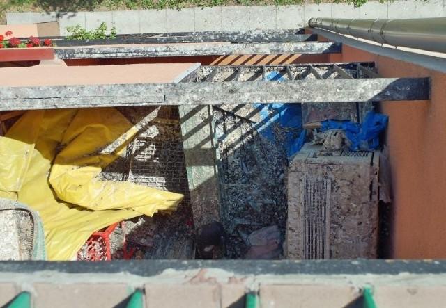 Balkon sąsiada jest cały zapaskudzony ptasimi odchodami.