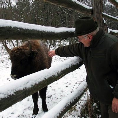 Do Witolda Szybowskiego Pubal trafił jako kilkudniowy cielaczek. Leśnik utrzymał go przy życiu karmiąc mlekiem przez smoczek.