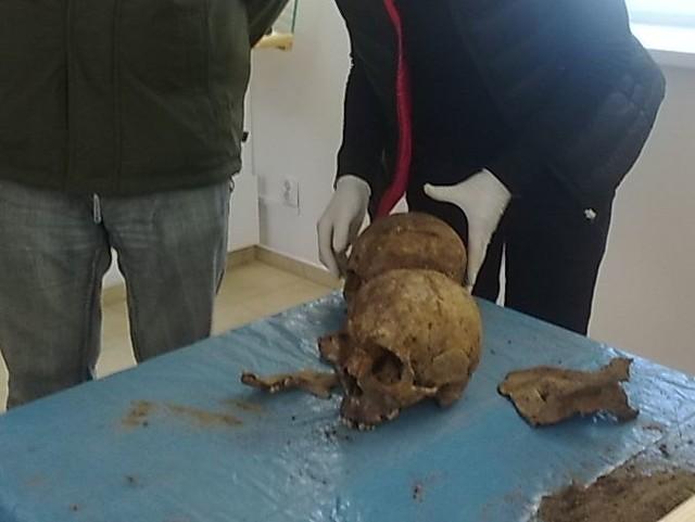 Na niektórych czaszkach odnaleziono rysy, świadczące o dobijaniu rannych