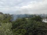 Wrocław: Pożar altanki na działkach przy Gądowiance