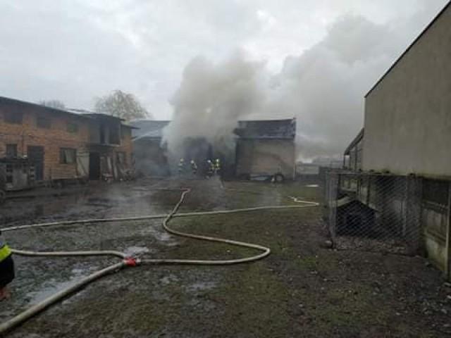 Dziecko poniosło śmierć w pożarze w Rososzy w powiecie łaskim.