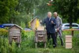 Białystok. Zakończyło się pierwsze miodobranie w białostockiej pasiece miejskiej. Miód będzie promował miasto