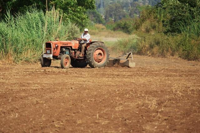Borelioza jest najczęstszą chorobą zawodową wśród rolników.Zobacz kolejne zdjęcia. Przesuwaj zdjęcia w prawo - naciśnij strzałkę lub przycisk NASTĘPNE