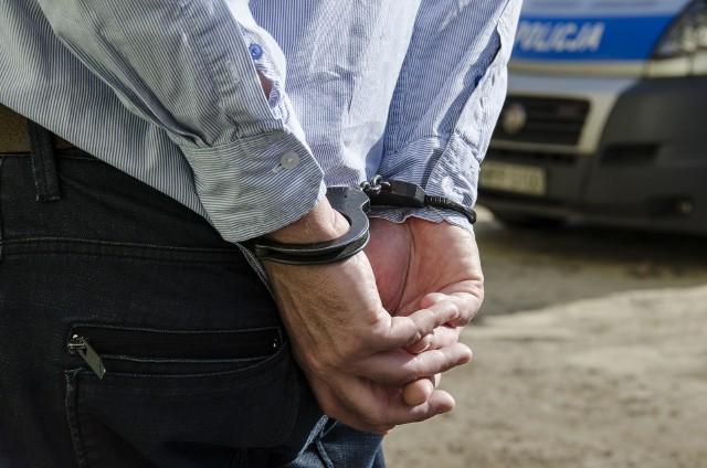 Zatrzymano kolejną osobę w związku z aferą z karmą dla zwierząt wykrytą przez CBA