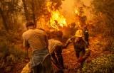 Grecja wciąż walczy z pożarami, a premier przeprasza rodaków za błędy popełnione w walce z żywiołem (WIDEO)