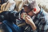 Upał i psy. Jak chronić psy przed upałem? Upał jest groźny dla zdrowia zwierząt. Jak pomóc psom podczas upału latem? Sprawdź! 13.06.2021