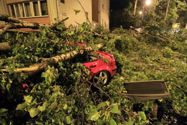 Tak wyglądał Wrocław po przejściu burzy w nocy z niedzieli na poniedziałekZOBACZ WIĘCEJ: WROCŁAW SPRZĄTA PO BURZY (FILMY, ZDJĘCIA)