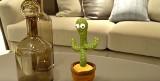 """Tańczący kaktus dla dzieci rapuje o kokainie. Zabawka podbija tajwańskie sklepy i odtwarza utwór """"Koksu pięc gram"""" Cypisa"""