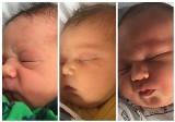 Witamy najmłodszych gdynian i gratulujemy ich rodzicom! Dzieci urodzone w szpitalu w Redłowie