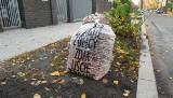 Poznań: Możesz zamówić worki na liście. Zarząd Dróg Miejskich dostarczy je za darmo i odbierze, gdy zbierzesz liście z miejskiego chodnika