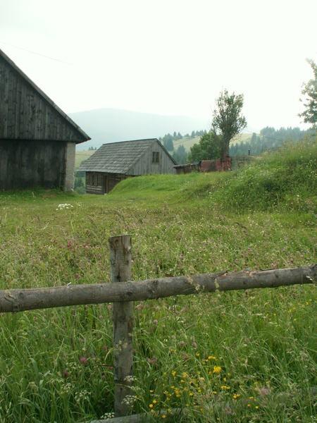 Bukowina to nie tylko chaty z drewna i góry. Na przedgórzu uprawiana jest winorośl