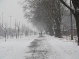 Pogoda na luty 2021. Będzie zimo! Kiedy koniec zimy? Do kiedy utrzyma się mróz i śnieg? Kiedy nastąpi ocieplenie? 9.02.21