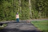 Wybiegi dla psów w Pabianicach. Taki jest pomysł jednego z radnych Rady Miejskiej