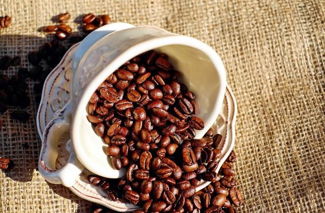 Rocznie na całym świecie wypijanych  jest ok. 400 miliardów filiżanek kawy. (fot. Pixabay)