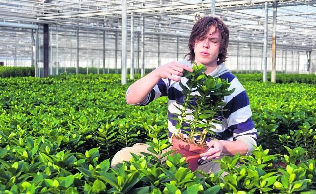 Wakacyjne oferty pracy najbardziej kuszą uczniów i studentów, którzy zatrudniają się chętnie na przykład do prac w ogrodnictwie.