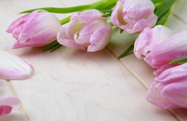 Jakie życzenia na Dzień Matki złożyć? Zobaczcie nasze propozycje.