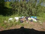 Kolejne nielegalne wysypisko śmieci nad Wartą w Poznaniu. Liczba interwencji straży miejskiej wzrosła