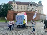 Kraków. Protestowali pod Wawelem przeciw zabudowie Doliny Prądnika [ZDJĘCIA]