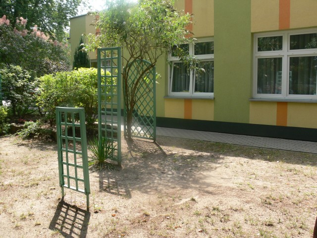 W przyzakładowym ogrodzie odnowiono także drewniane pergole. Niebawem pojawią się przy nich nowe nasadzenia krzewów, które przyciągną motyle