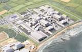 Polska spółka atomowa zwiera szyki. Do końca lipca powstanie karta informacyjna elektrowni jądrowych